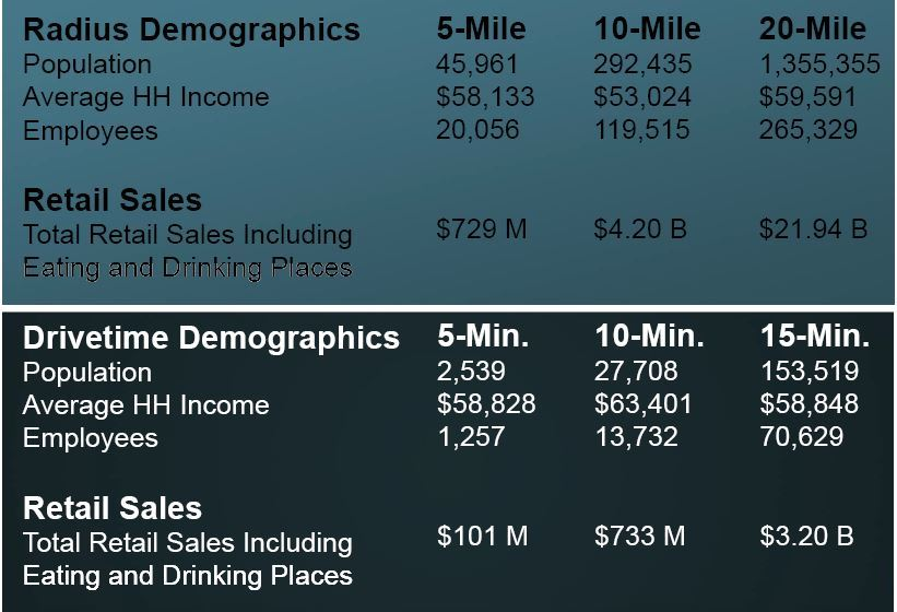 Drive-Time Demographics Table